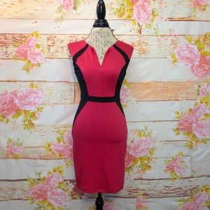 Do & Be V-Notch Bodycon Dress